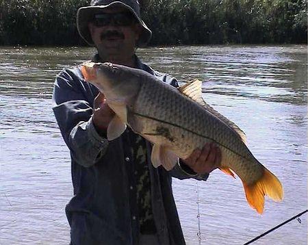 старая астрахань рыбалка