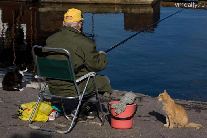 отчеты о рыбалке фаустово